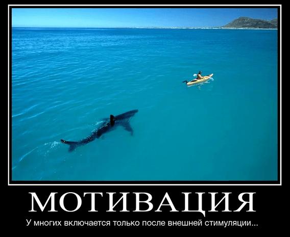 мотивация в бизнесе